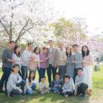 大阪城公園、桜満開です!!
