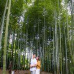 竹林の穴場スポット